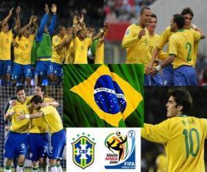 puzzel Selectie van Brazilië, Groep G, Zuid-Afrika 2010