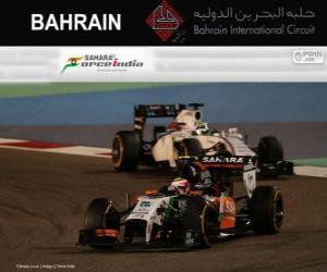 puzzel Sergio Perez - Force India - 2014 Grand Prix van Bahrein, 3e ingedeeld