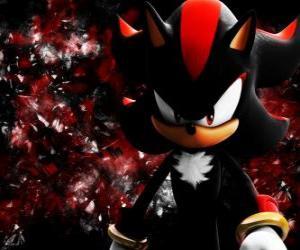 puzzel Shadow is een egel als Sonic en zijn rivaal