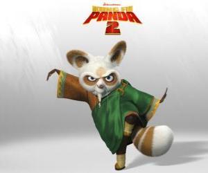 puzzel Shifu is de coach van alle grote kung fu vechters in het land.