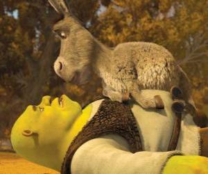 puzzel Shrek en Donkey aan te staren