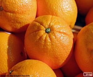 puzzel Sinaasappelen