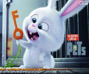 puzzel Snowball, een wit konijn