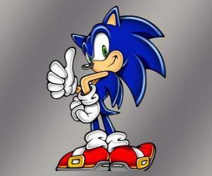 puzzel Sonic egeltje, de hoofdpersoon van de Sonic videogames van Sega