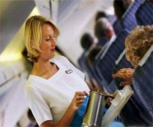 puzzel Stewardess