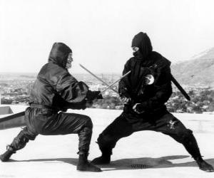puzzel Strijd tussen twee ninjas