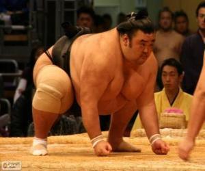 puzzel Sumo worstelaar klaar voor