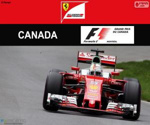 puzzel S.Vettel, Grand Prix van Canada 2016
