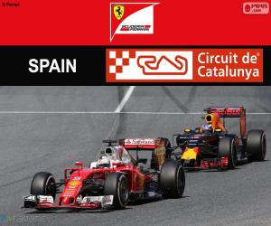 puzzel S.Vettel, Grand Prix van Spanje 2016
