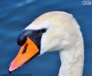 puzzel Swan hoofd