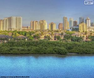 puzzel Tampa, Verenigde Staten