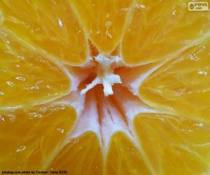 puzzel Tangerine binnen
