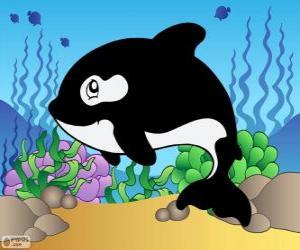 puzzel Tekening van een orca