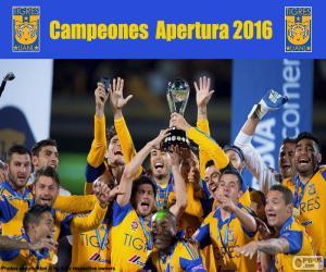 puzzel Tigres UANL, Apertura 2016
