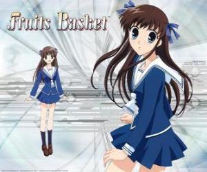 puzzel Tohru Honda is een middelbare school student en de hoofdpersoon van Fruits Basket