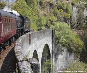 puzzel Trein die door een viaduct loopt