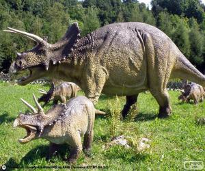 puzzel Triceratops