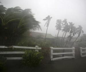 puzzel Tropische storm