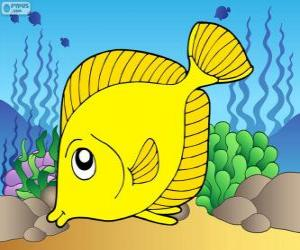 puzzel Tropische vis