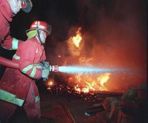 puzzel Twee brandweerlieden in actie