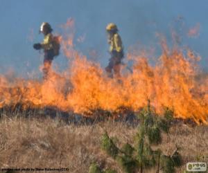 puzzel Twee brandweerlieden, vuur