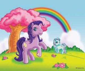 puzzel Twee pony op het platteland