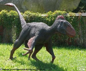 puzzel Utahraptor
