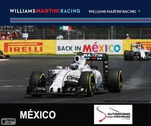 puzzel V. Bottas Grand Prix van Mexico 2015