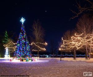 puzzel Verlichte kerstbomen