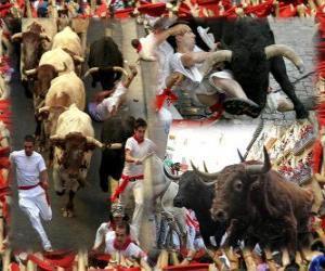 puzzel Verloop van de stieren of encierro, Sanfermines. Pamplona, Navarra, Spanje. San Fermínfeesten van 6 tot en met 14 juli