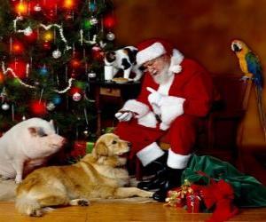 puzzel Verschillende dieren met Santa