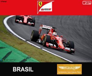 puzzel Vettel, Grand Prix van Brazilië 2015