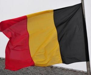 puzzel Vlag van België