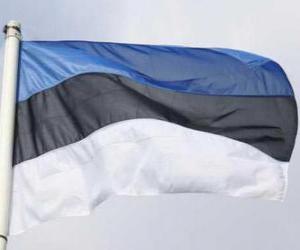puzzel Vlag van Estland