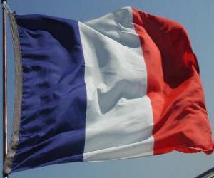 puzzel Vlag van Frankrijk