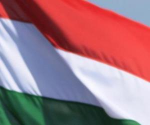 puzzel Vlag van Hongarije