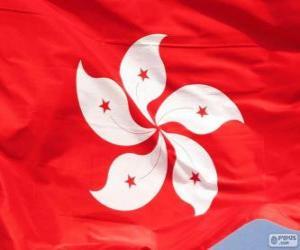 puzzel Vlag van Hongkong