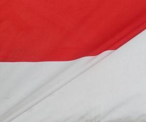 puzzel Vlag van Indonesië