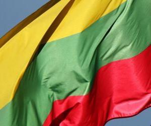 puzzel Vlag van Litouwen