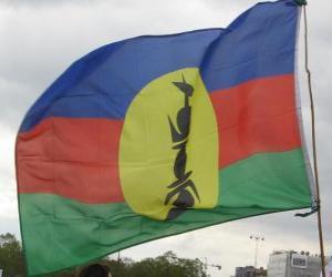 puzzel Vlag van Nieuw-Caledonië