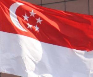 puzzel Vlag van Singapore
