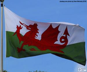 puzzel Vlag van Wales