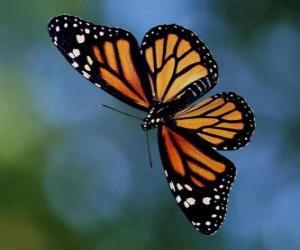 puzzel Vlinder vliegen