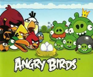 puzzel Vogels, eieren en groene varkens in Angry Birds