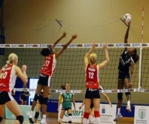 puzzel Volleybal - speler bijgevuld de bal proberen te blokkeren het andere team