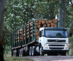 puzzel Vrachtwagen vervoer van boomstammen
