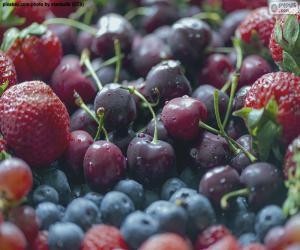 puzzel Vruchten van het bos