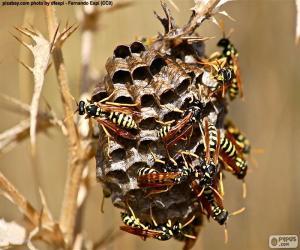 puzzel Wasp zwerm