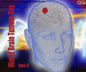 puzzel Wereld Hersentumor Dag