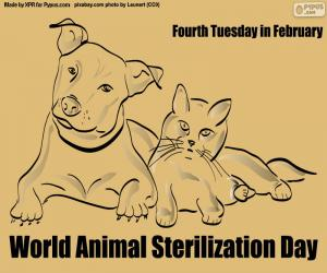 puzzel Werelddieren sterilisatiedag